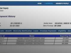 Check SSS employment history online