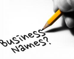 Register Business Name