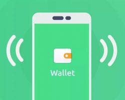 Wallet Financial Application